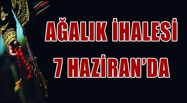 AĞALIK İHALESİ 7 HAZİRAN'DA