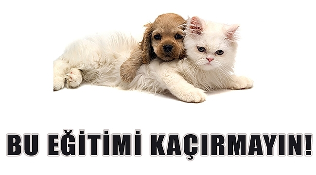 BU EĞİTİMİ KAÇIRMAYIN!